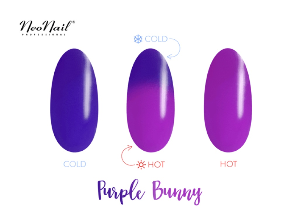 Gelinis lakas Termo 6 ml – Purple Bunny