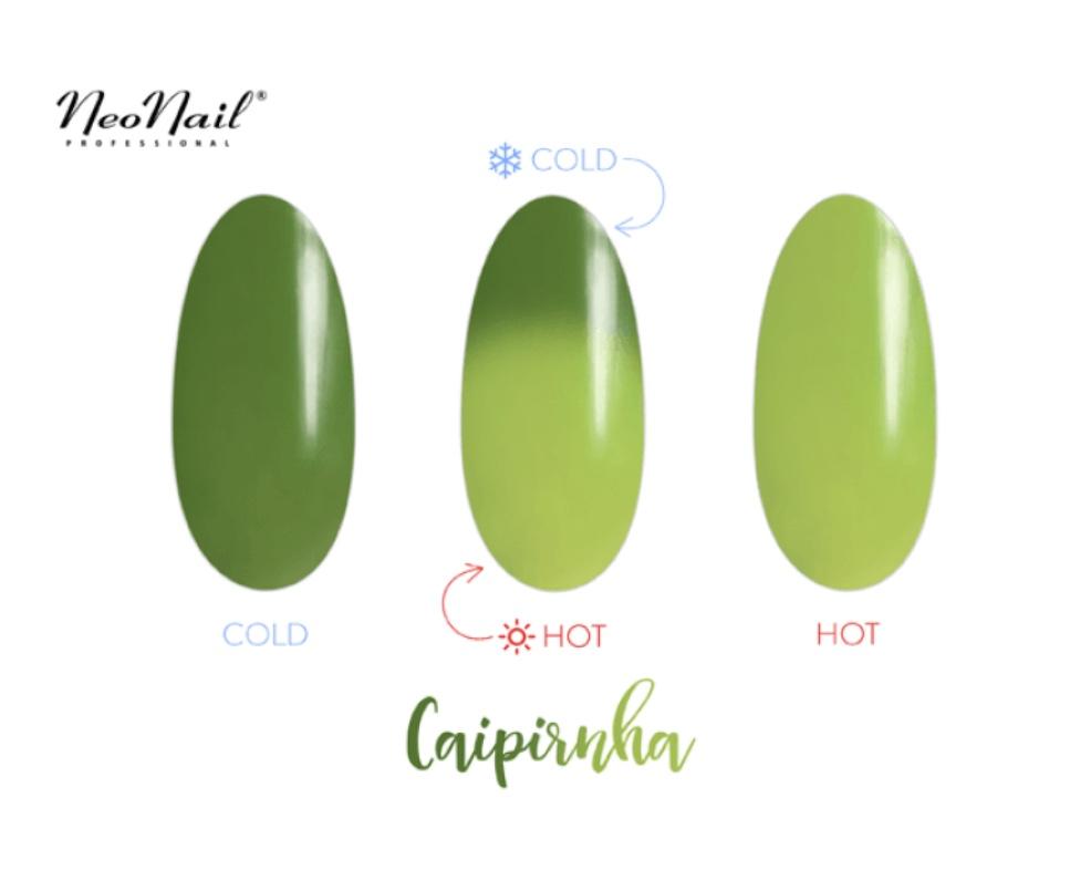 Gelinis lakas Termo 6 ml – Caipirinha